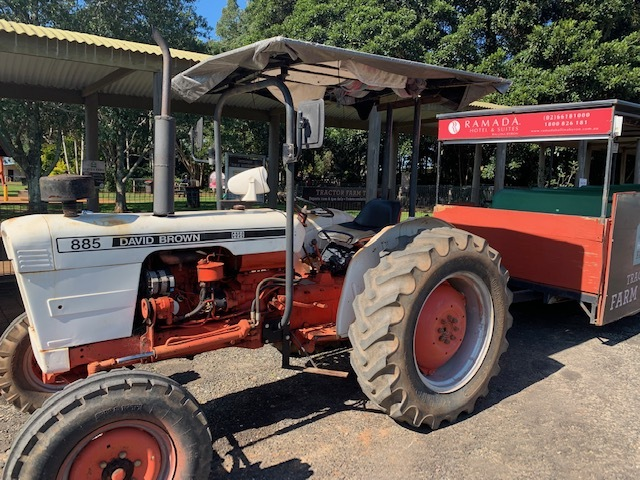 Farm tours Summerland House with no Steps Alstonville northern rivers NSW