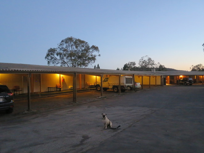 high country motel, cooma, snowy mountains, motel, hotel, accomodation, air bnb, dog friendly, conference rooms, free wifi, swimming pool, large property, new south wales, canberra, high country