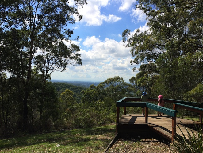 McAfees Lookout