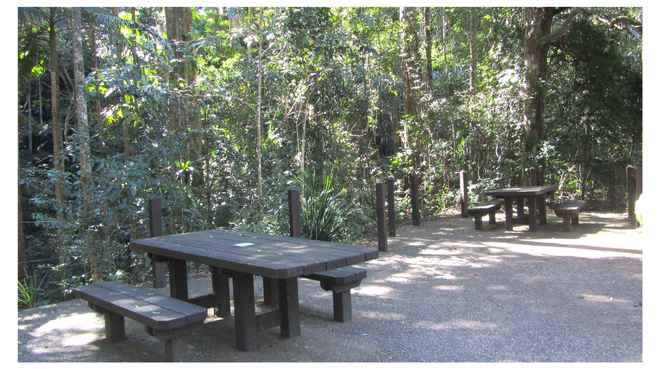 Picnic, Mt Cougal, Springbrook National Park, Facilities
