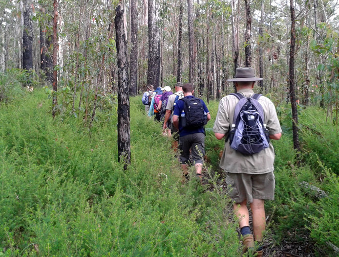Hiking through open dry bushland on the Somerset Trail