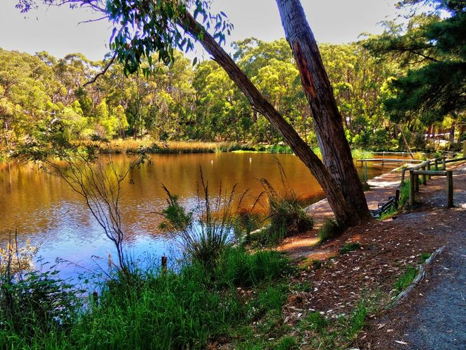 things to do in adelaide, what to do in adelaide, school holidays, kids, children, shopping, markets, free, lake woorabinda, stirling linear park
