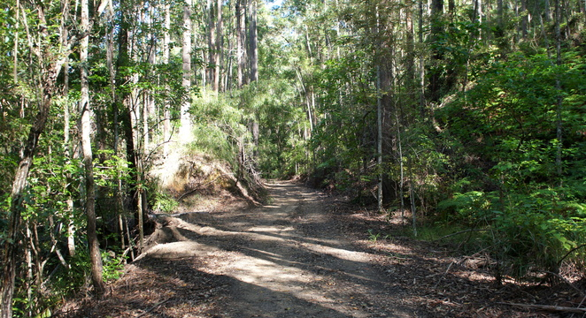 The Wamuran Rail Trail cuts through hills and over built up sections