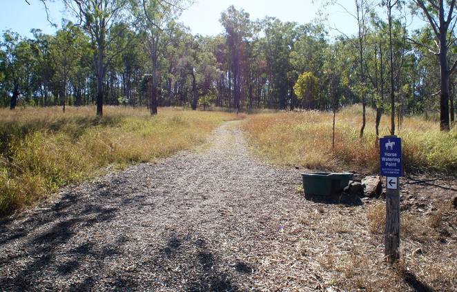 The horse watering point is where the real hiking trail starts
