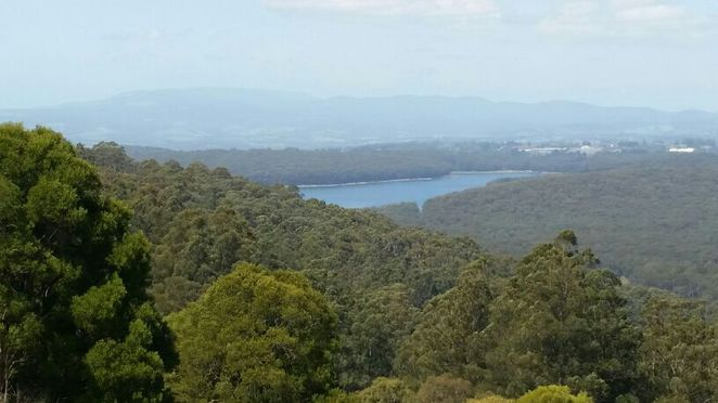 A favorite view on Mount Dandenong