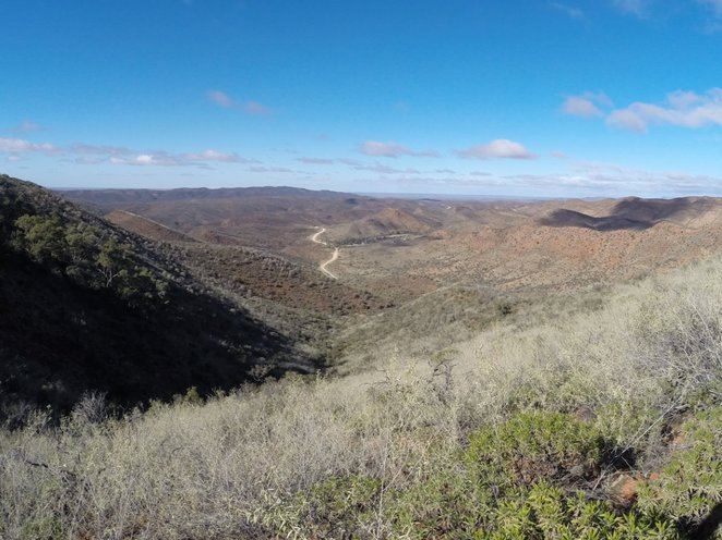 Arkaroola, Acacia Ridge