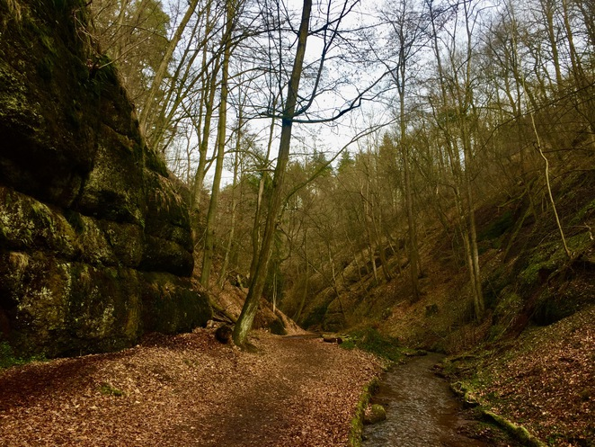 Drachenschlucht Hiking Hike Eisenach Thuringia Forest Nature Germany