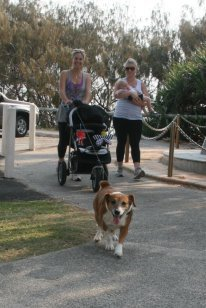 Everyone can join in the free 5km run every Saturday/image from Parkrun Kawana Facebook