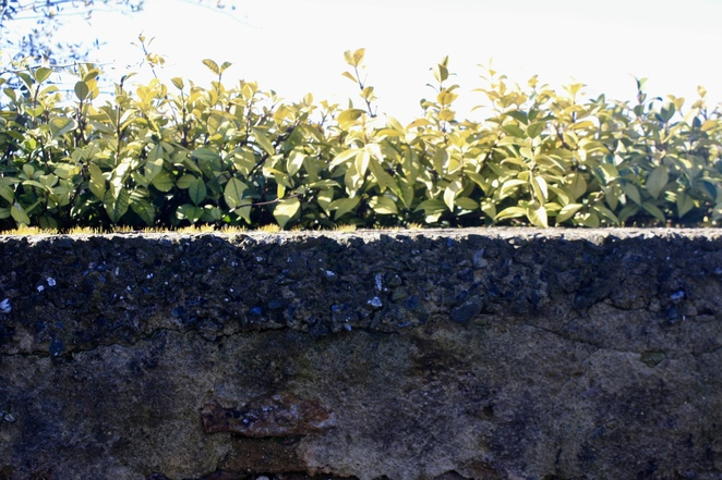 The old stone walls at Samuel Gorge Winery - Photo by Jenny Esots