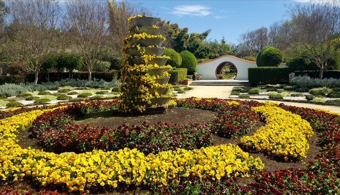Garden, flowers, colour, spring, Hunter Valley