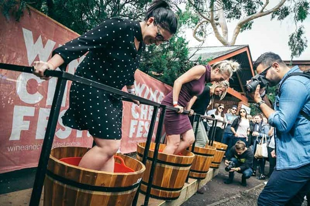 Grape,stomping competition