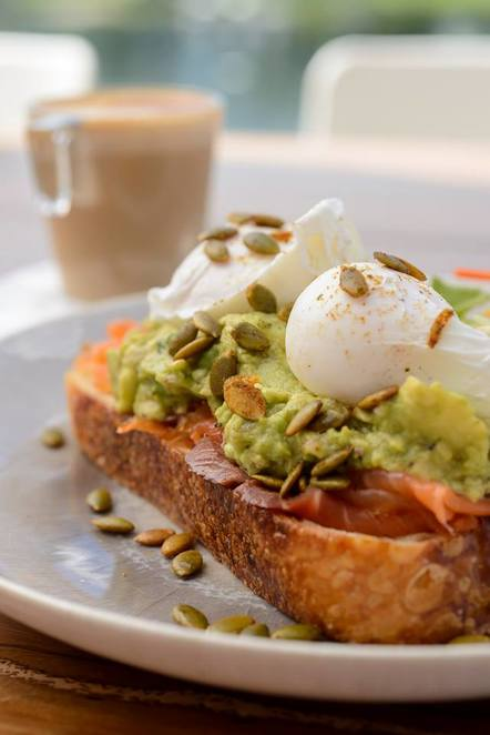 home ground, adelaide convention centre, convention centre, river torrens, river, food, adelaide, Home Ground Cafe Court, torrens, smashed avocado