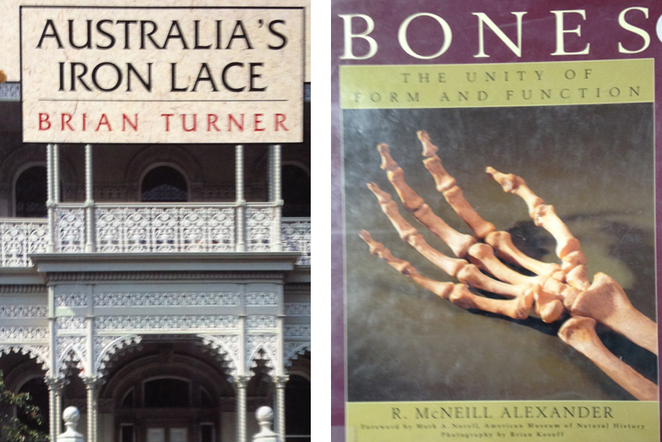 Iron and Lace and Bones at Book Bazaar