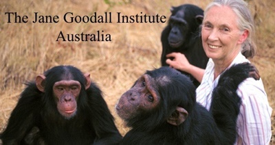 Jane,with,her,chimps