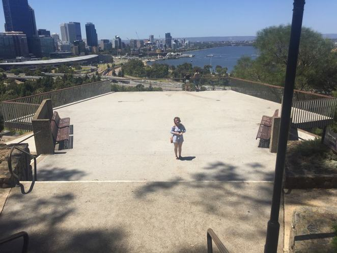 Kings Park, what to do in the city, things to do in Perth, plant lovers,botanic gardens, botanic gardens in Perth, summer activity