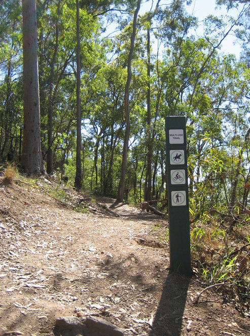 The start of the top of the lookout trail