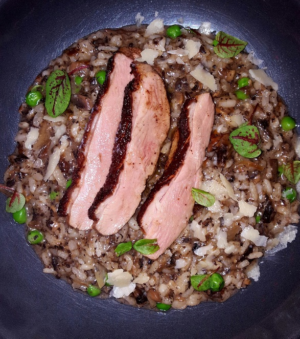 Main course, duck, risotto, dinner