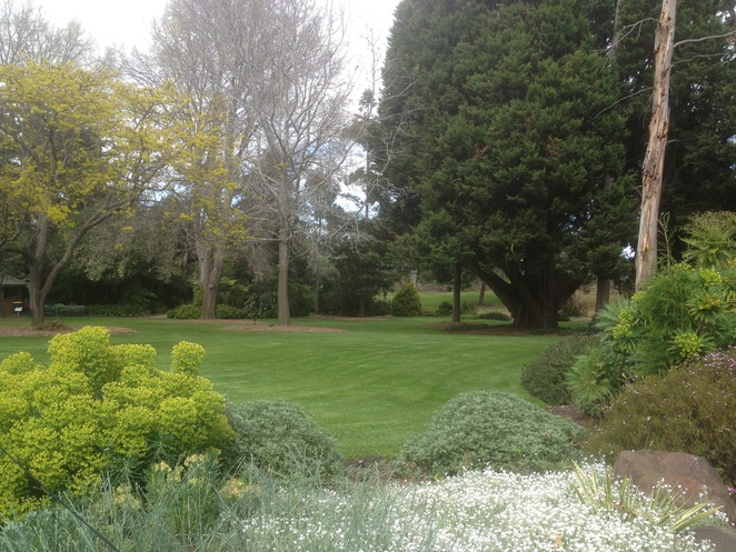Lawn at Geelong Botanical Garden
