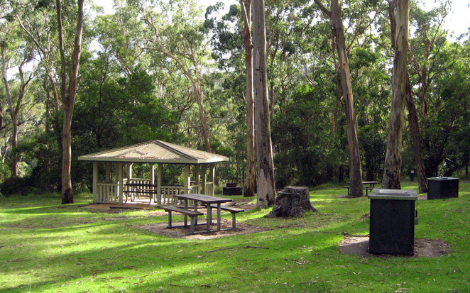 The Picnic Area at Queen Mary Falls
