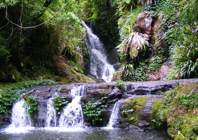 Waterfalls in rainforests are one of the best features of hiking in South East Queensland