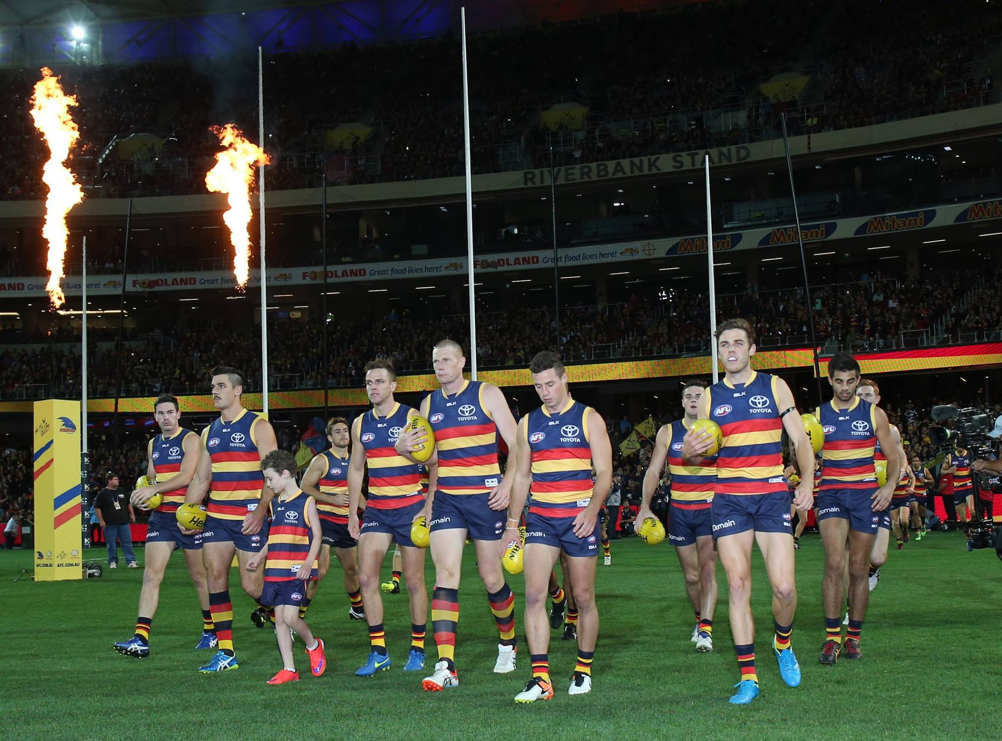 adelaide crows - photo #9