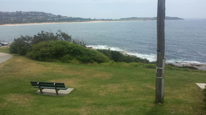 Dee Why Cliff Reserve seating view