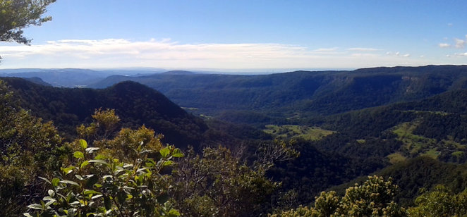 Views on the Mt Hobwee Circuit
