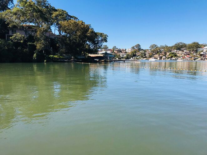 oatley bay, pleasure grounds, georges river, swim, swimming area, bush park