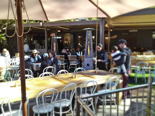 pollen, cafe, canberra, ACT, breakfast, cake, coffee, lunch