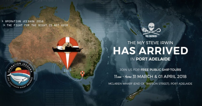 Sea Shepherd Steve Irwin, Port Adelaide, Free Tours