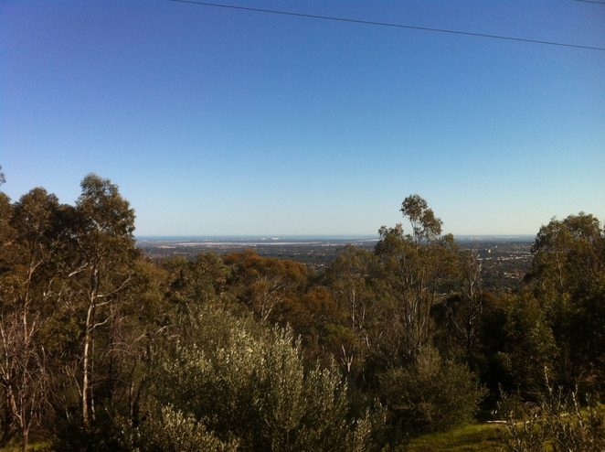 Adelaide's panoramic view from the top of a log!