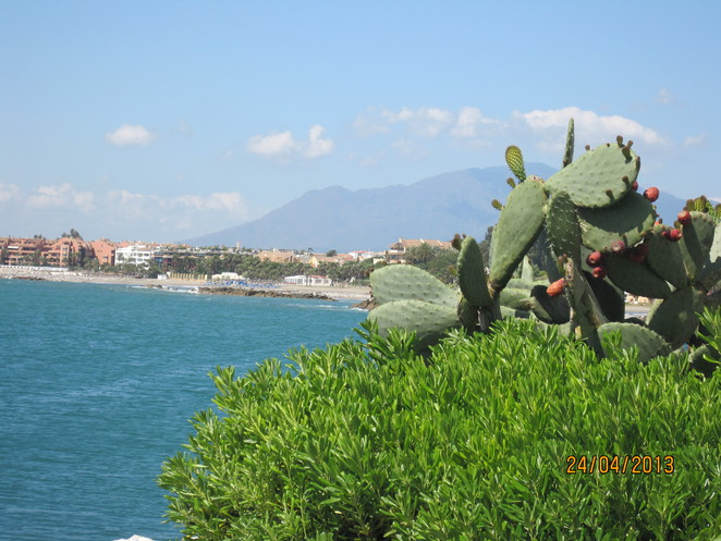 Bay View of Puerto Banus