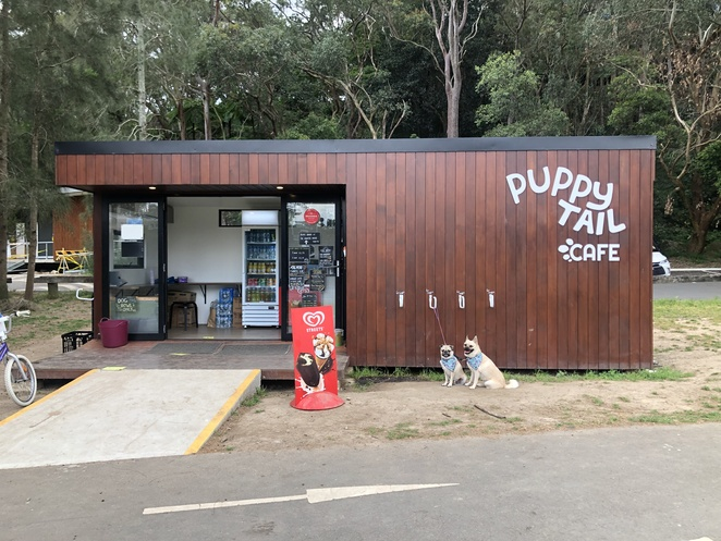 chew chew pet restaurant, puppy tail cafe, Blackman park, lane cove, dog friendly, Sydney, inner west, puppiccino, naoko, small business, things to do sydney