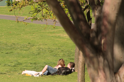 couple, lovers, romantic spots, adelaide, river torrens, teenagers