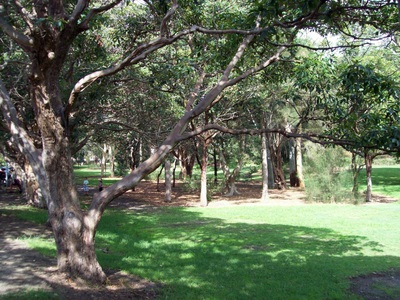 Free things to do in Sydney this weekend - Nielsen Park