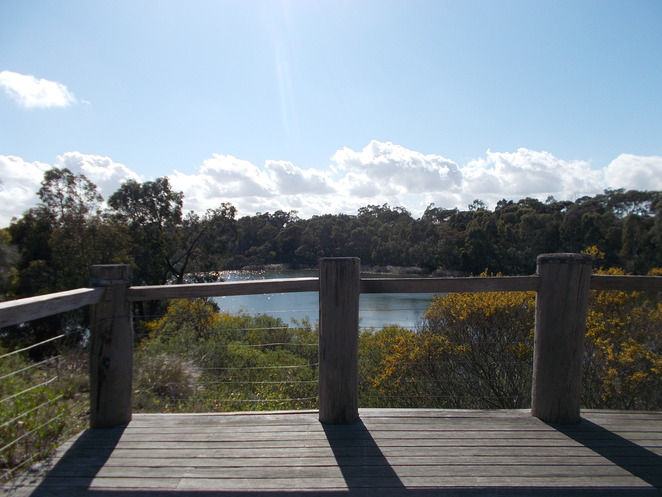 newport lakes melbourne fence lookout trees park