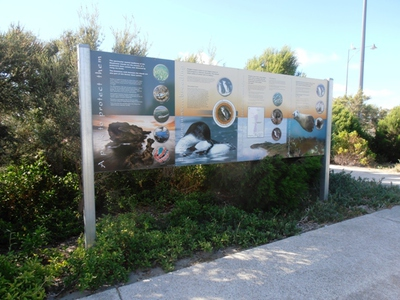 There are many interpretation signs at Port Kennedy Beach to help you understand the natural environment better.