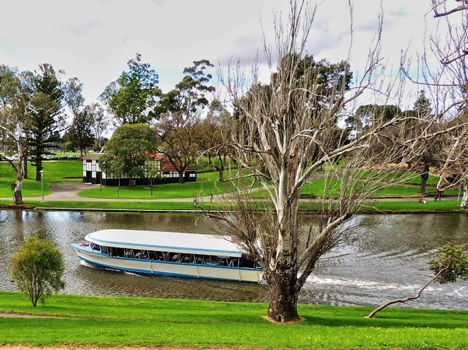 sa today, photo competion, regions of south australia, in adelaide, south australia, barkuma, sala festival, free competition, river torrens cruise
