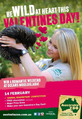 Share the love at Australia Zoo this Valentine's Day/Image from Australiazoo.com.au