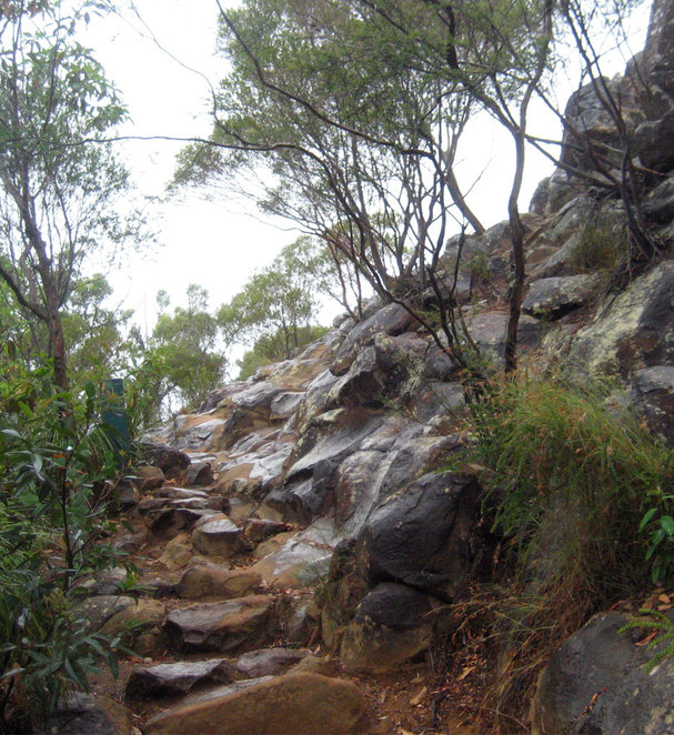 The are some steep sections and stairs up Mt Ngungun