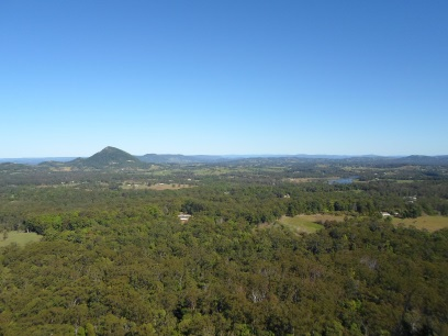 tewantin state forest, tewantin national park, Mount Tinbeerwah