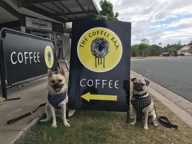the coffee baa, dog friendly, cafe, restaurant, breakfast, brunch, lunch, coffee, springfield, ipswich, southern suburbs, southside, brisbane, food, drink, espresso bar