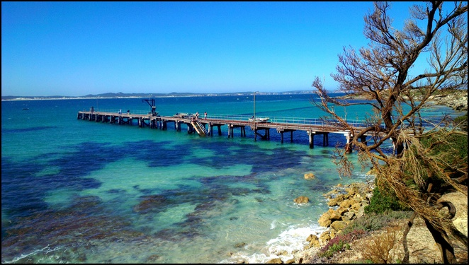 vivonne bay, kangaroo island, south australia, tourist attractions, natural attractions, beach