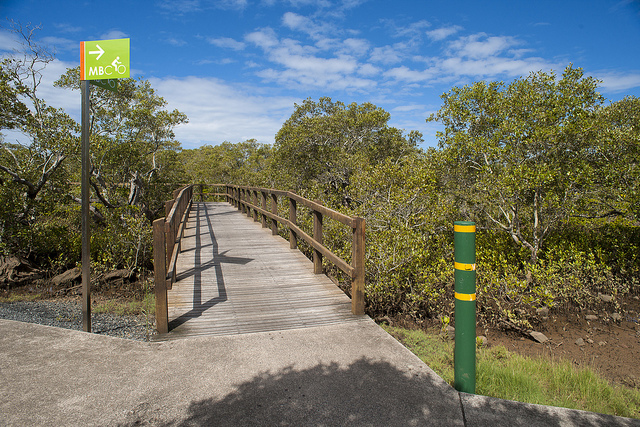 Photo of the boardwalk at Wynnum courtesy of the Brisbane City Council