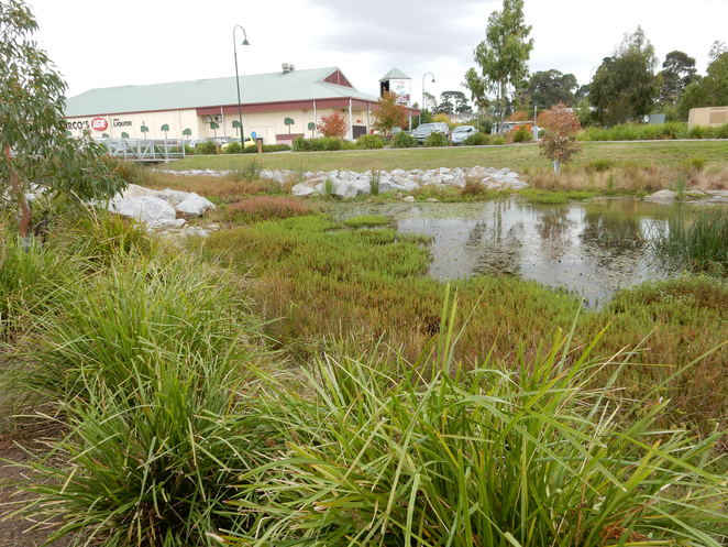 wetlands, park, Ackland, Narre Warren North,