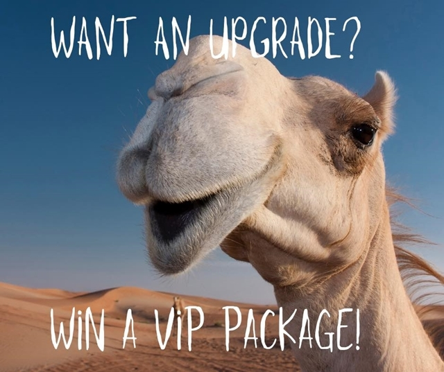 Win,a,VIP,package