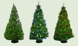 Image Courtesy of the S & G's Christmas Trees website