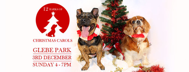 12 barks of christmas, canberra, glebe park, 2017, RSPCA, dog events, Canberra, ACT, 2017,