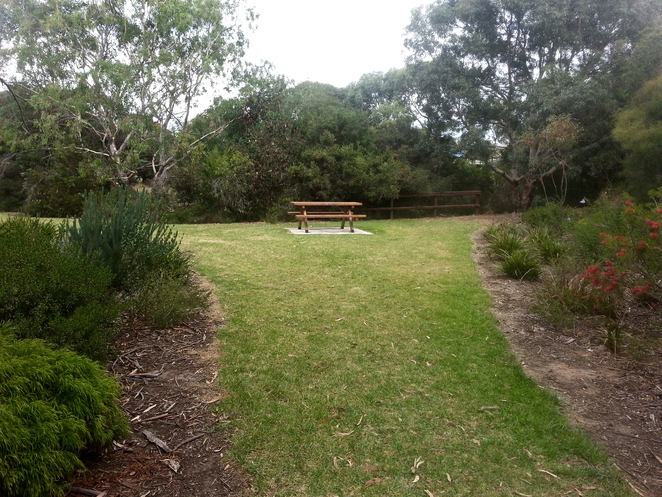 Ashwood reserve, Ocean Grove, picnic spot, walk, walking track, bird watching, trail, Tareeda Way, Parkview Avenue, Bellarine,