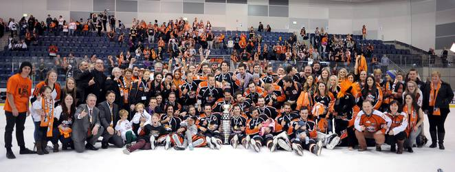 Australian Ice Hockey League, AIHL, Icehouse, Medibank Icehouse, Melbourne Mustangs